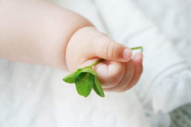 草を握る赤ちゃんの手
